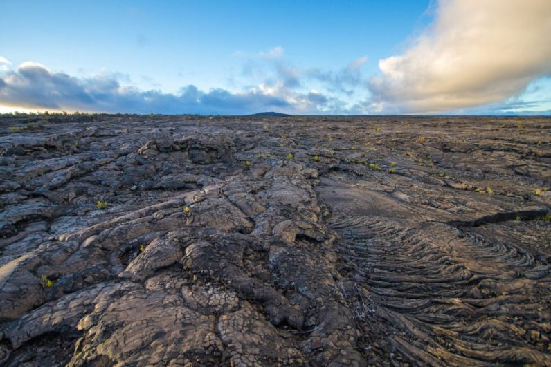 View of the East Rift Zone from the Chain of Craters Road in Hawaii Volcanoes National Park.