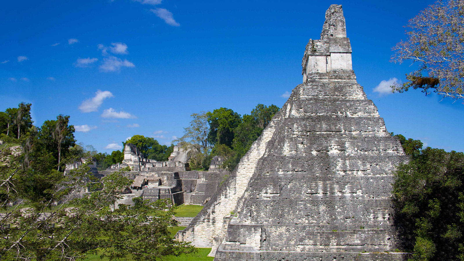 Climbing-the-Mayan-Ruins-of-Tikal—Feature