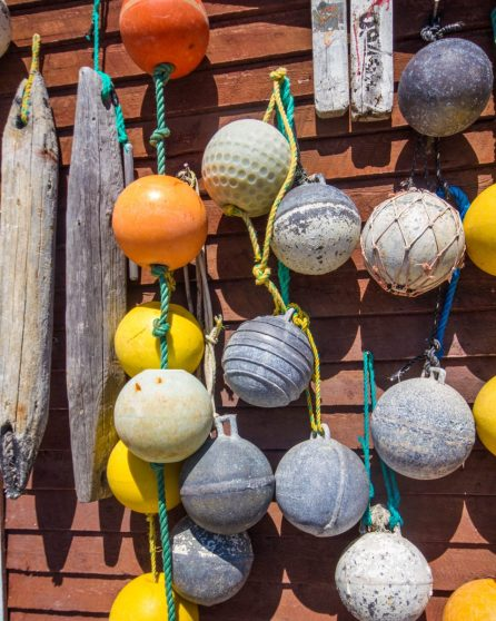 buoys and fishing nets tacked to a fishing shed wall - Icebergs in Twillingate