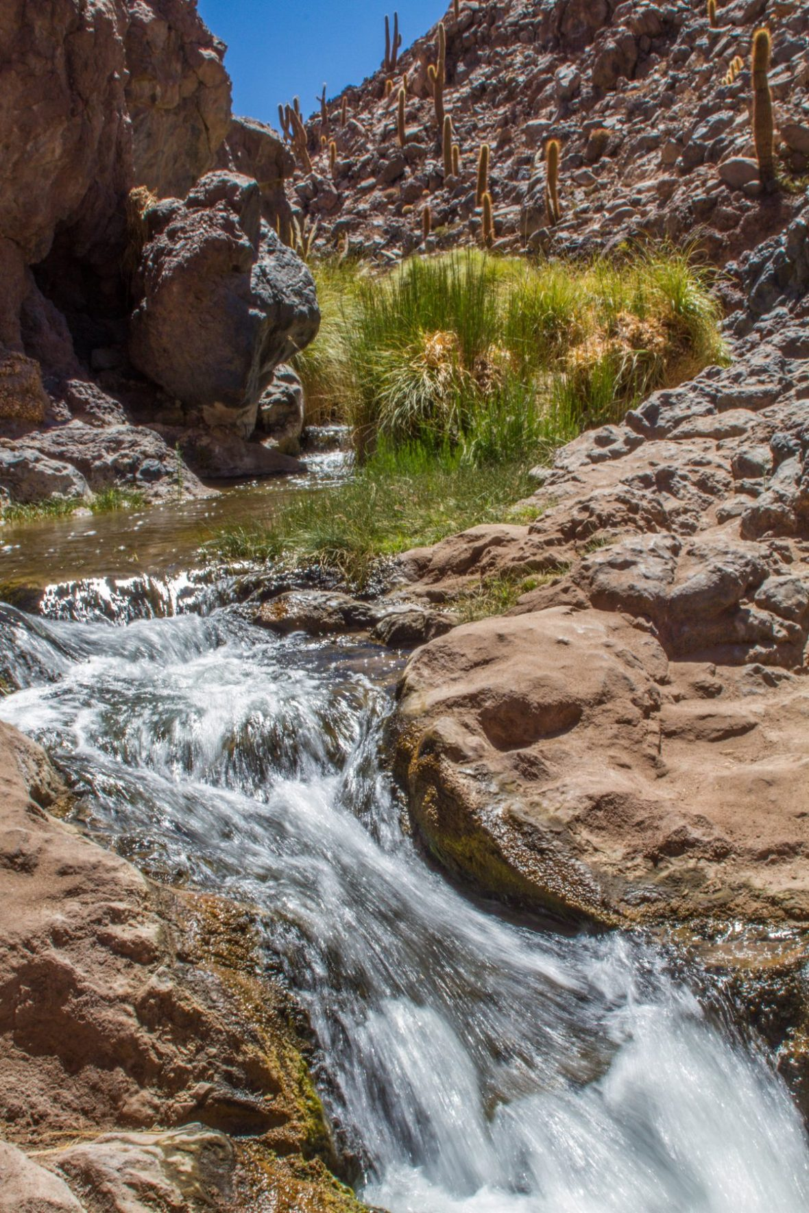 Waterfall in Cactus Valley.