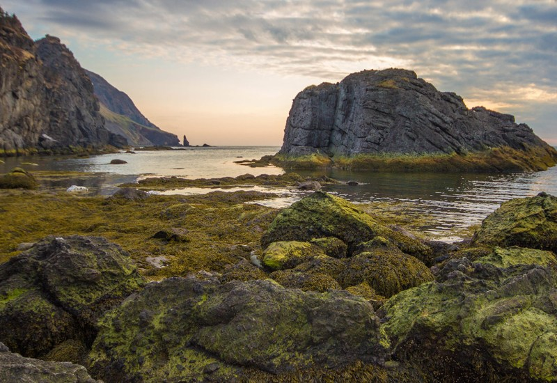 Rocks covered in green moss and tall cliffs along the coast of Gros Morne National Park in Newfoundland