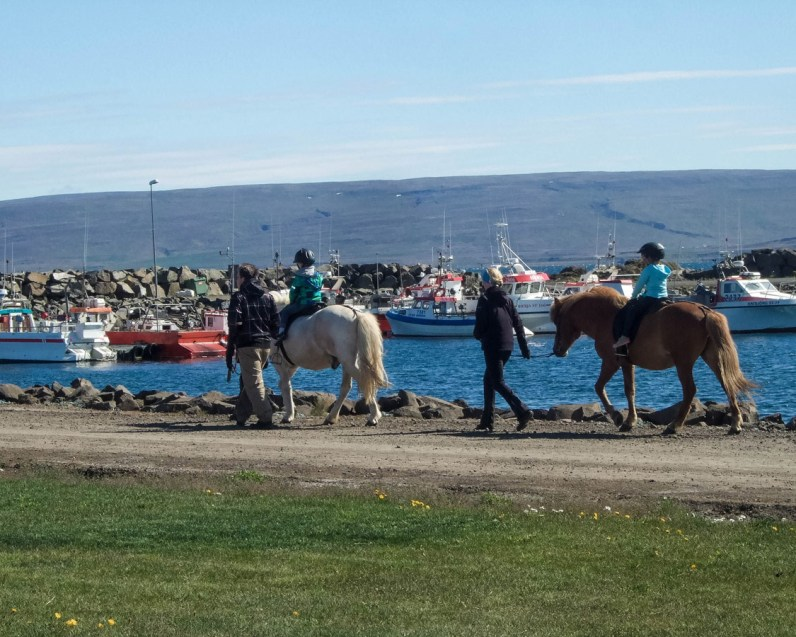 Children ride horses at a festival in Holmovik, Iceland - An Epic 14 Day Iceland Itinerary