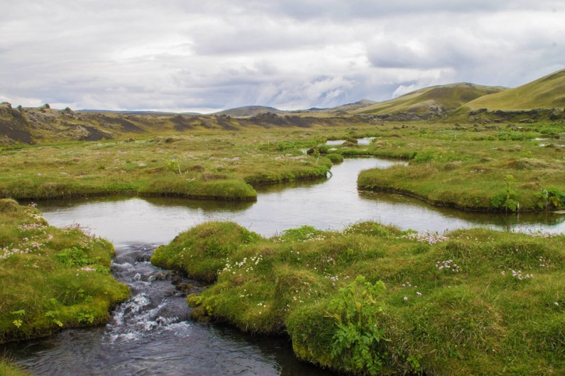 A green field and meandering river near Lakagigar - An Epic 14 Day Iceland Itinerary