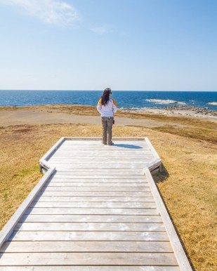 a woman stands at the end of a pier on the sunny coast of Newfoundland - Newfoundland Viking Trail