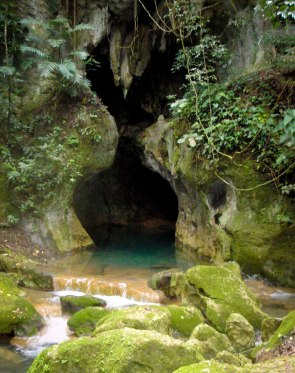 A tall, narrow, cave opening covered in vegetation with a small waterfall outside - caves you can visit with kids