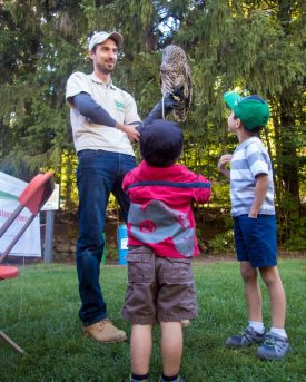 two young boys talk with an owl handler holding a barn owl at the Belfountain Salamander Festival in Belfountain, Ontario
