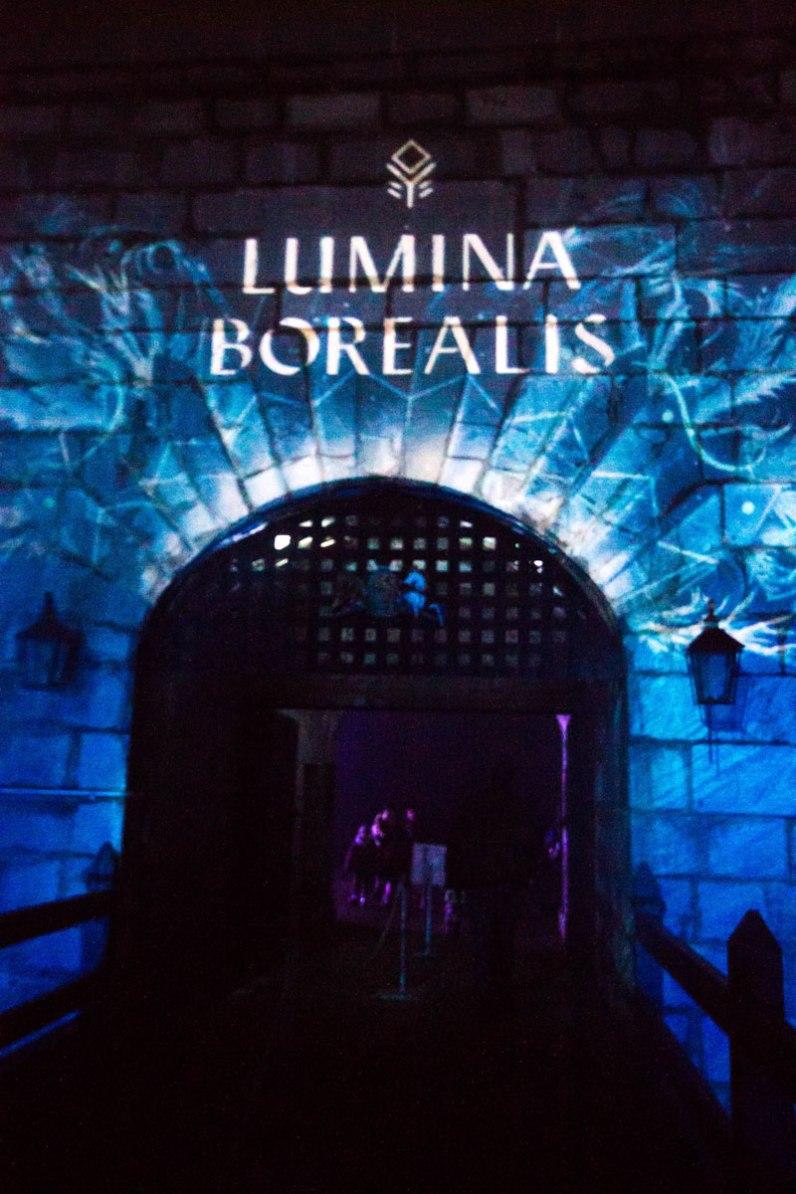 Illuminated entryway at Lumina Borealis.