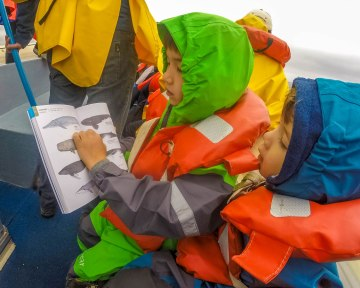 Boys look at whales pictured in a book while on a boat.