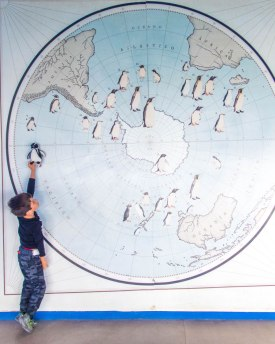 Young boy holds a toy penguin up against a map of the worlds penguin populations at the Punta Tombo Penguin Interpretation Center