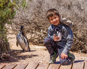 A young boy smiles and crouches next to a penguin while holding a toy penguin in Punta tombo Argentina