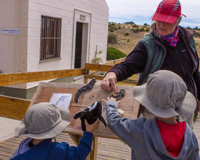 Two young boys learn about penguin wings and body types at the Punta Tombo Penguin Conservation Area in Argentina