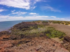Red rocks and green shrubs make a stunning coastal landscape in Punta Tombo Argentina