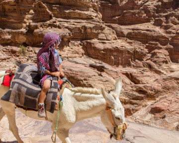 A toddler rides a horse wearing shorts and a bedouin headscarf