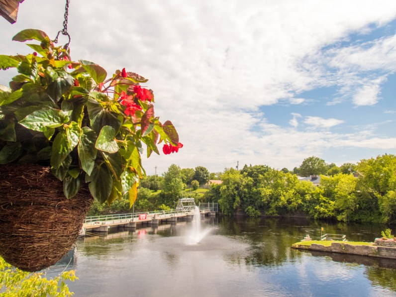 A hanging flowerpot in the foreground with a clean river and dam surrounded by trees while looking out from the back patio of the Rio Tap and Grill in Eganville Ontario