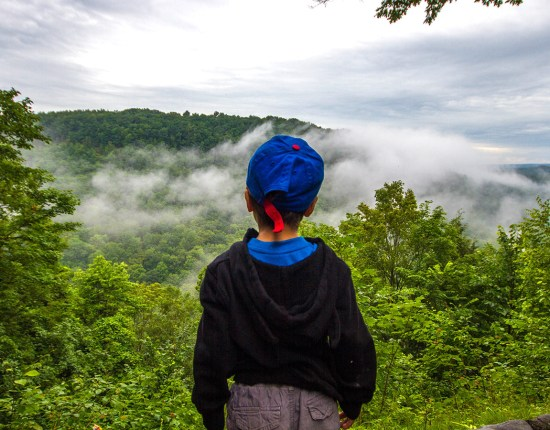 B looking over the gorge at Letchworth State Park