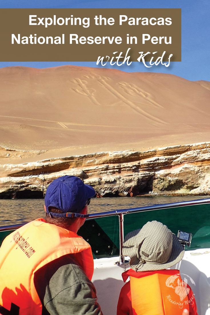 The Paracas National Reserve in Paracas Peru is one of the best day trips from Lima and touts some of the country's most amazing wildlife viewing. It makes for a perfect place to visit in Peru with kids