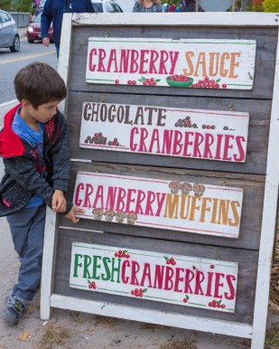 Checking out all the cranberry food at the Bala Cranberry Festival