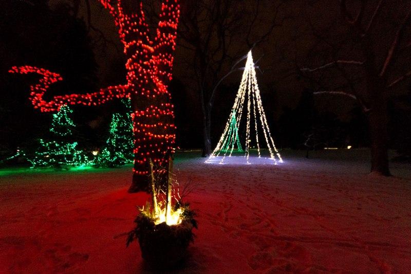 Niagara Falls Festival of Lights is one of the ways to spend winter in Niagara Falls, Ontario