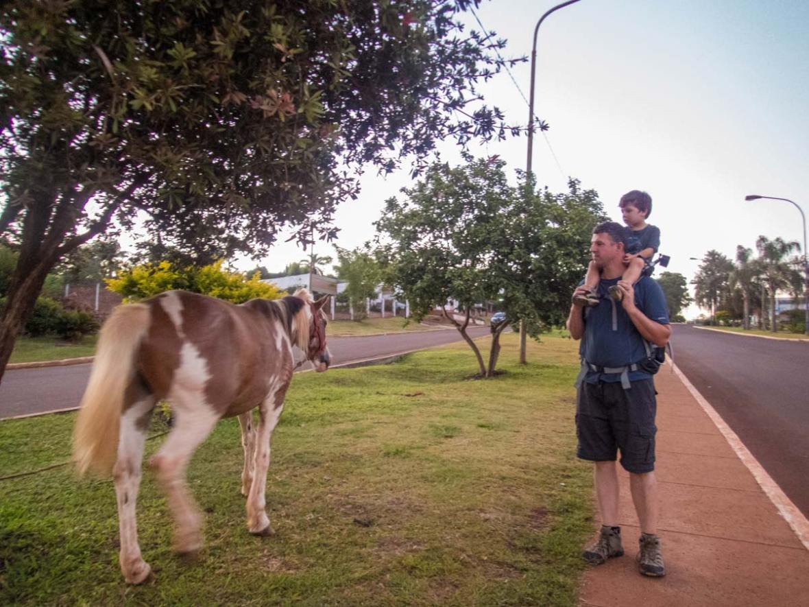 A Dad gives his son a shoulder ride in San Ignacio Argentina while looking at a horse walking along the street