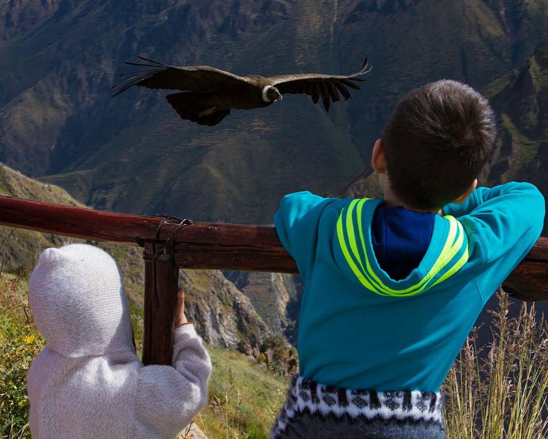 Two boys watching condors in Colca Canyon Peru