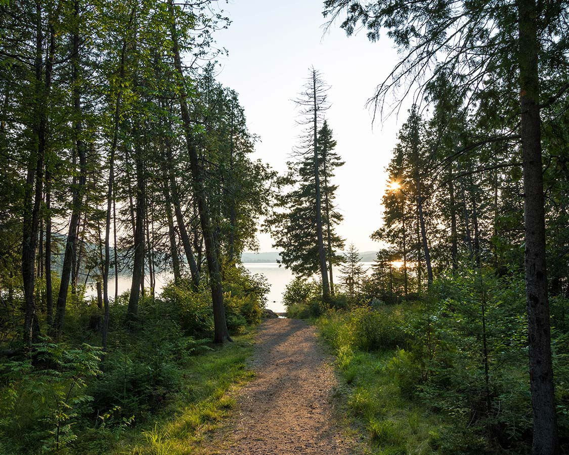 Hiking in Lake Placid Brewster Peninsula Nature Trails
