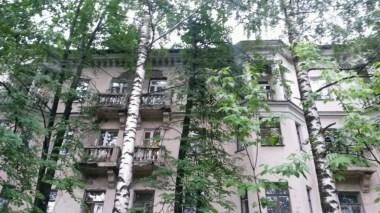 Jahrzehnte wuchern Bäume selbst im Innenstadtbereich vor den Fenstern, verdunkeln so jeden sonnigen Tag wie im Jungel von Afrika.