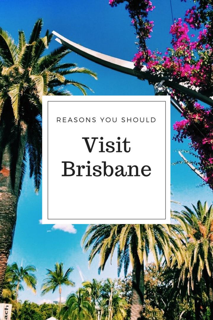 Reasons you should visit Brisbane