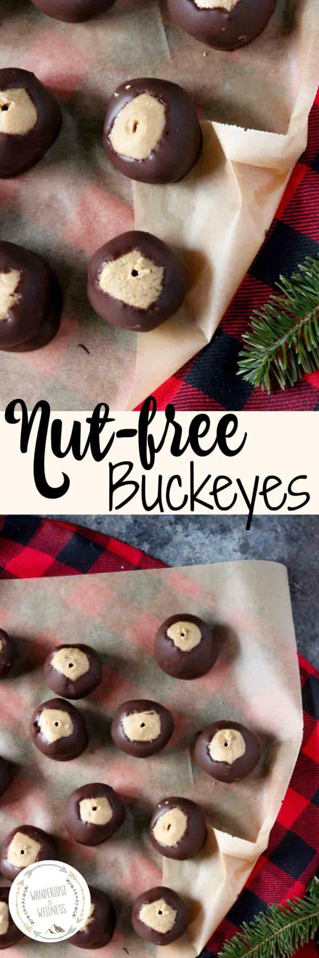 Nut-free Buckeyes