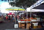 Stuart Sunday Market, Martin County, Florida