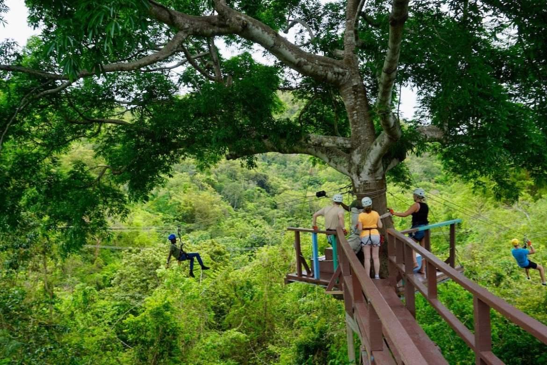 Antigua Rainforest Ziplining Tours