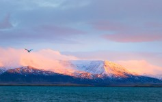 visitare l'islanda in inverno