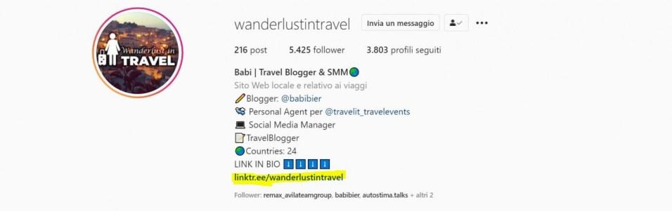 biografia di instagram (3