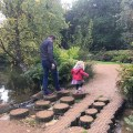 Stepping stones at Isabella Plantation, Richmond Park, London