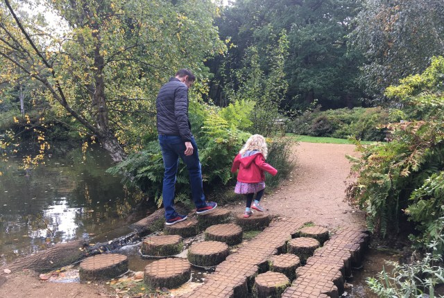 Stepping stones at Isabella Plantation, Richmond Park, London