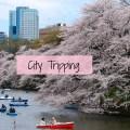 tokyo-spring-city-tripping63-pixabay