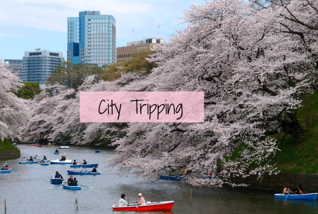 tokyo-spring-city-tripping63-pixabay