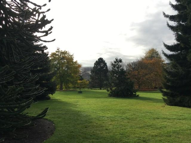 Kew Gardens in autumn, London