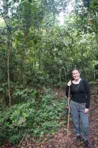 Hiking Stick for Chimp Trekking in Kyambura Gorge