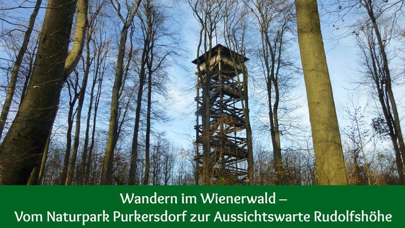 Naturpark Purkersdorf Wienerwald Tiergehege Tiere Aussicht Aussichtsturm Wandern Wanderung Niederösterreich