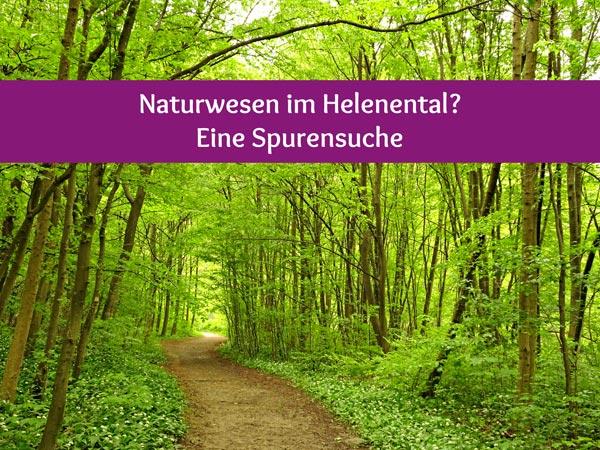 Naturwesen Helenental Baden Spaziergang Natur Wald