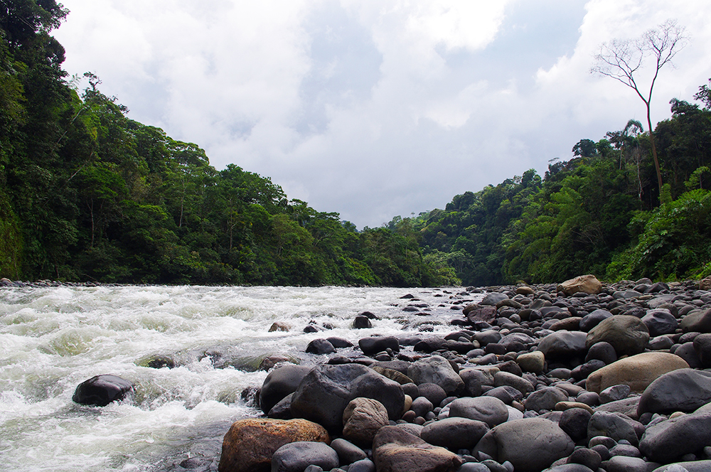 River near the rainforest town of Tena