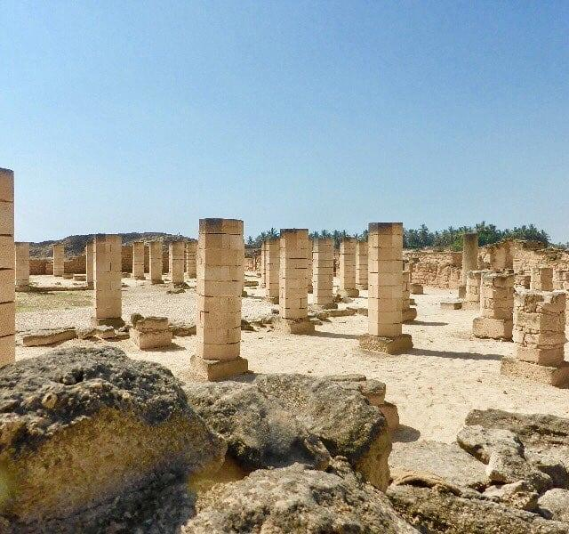 Strolling through the archaeological park discovering the ancient citys mosquehellip