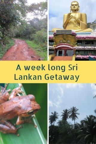 one week in Sri Lanka