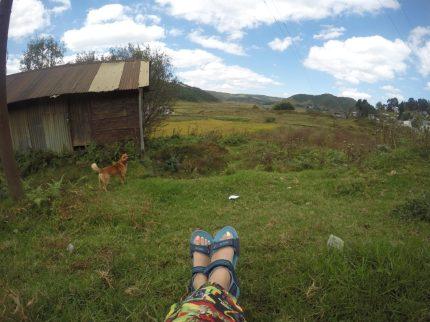 Enjoying village life