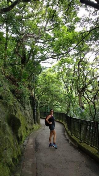 victoria peak hike