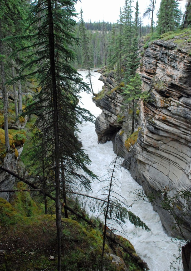 An image of Athabasca Falls in Jasper
