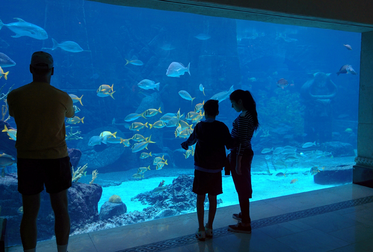 An image of the aquarium at Atlantis Resort, Paradise Island, Bahamas