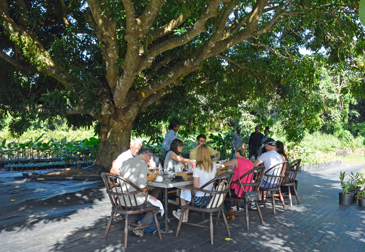 An image of table dining in the orchard at Belle Mont Farm