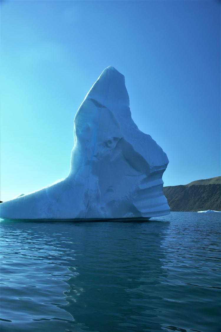 Image of an iceberg that looks like a face - iceberg pareidolia test