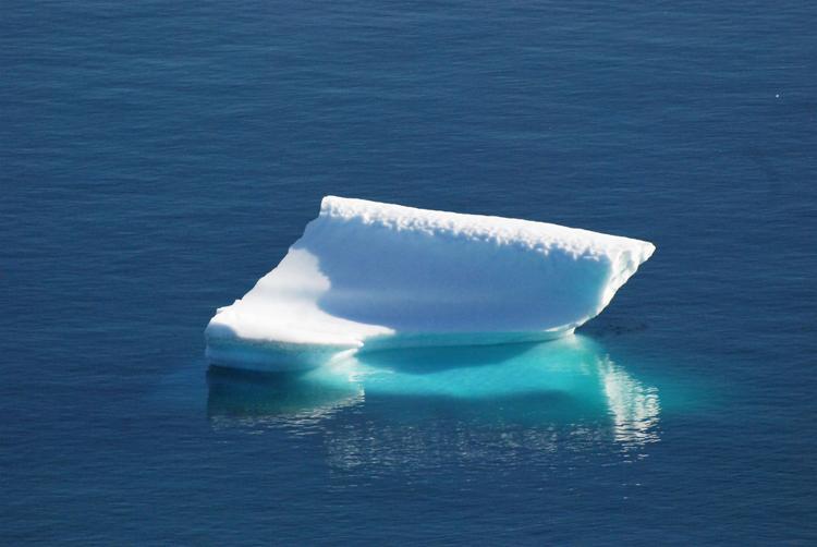 Image of an iceberg that looks like a grand piano - iceberg pareidolia test